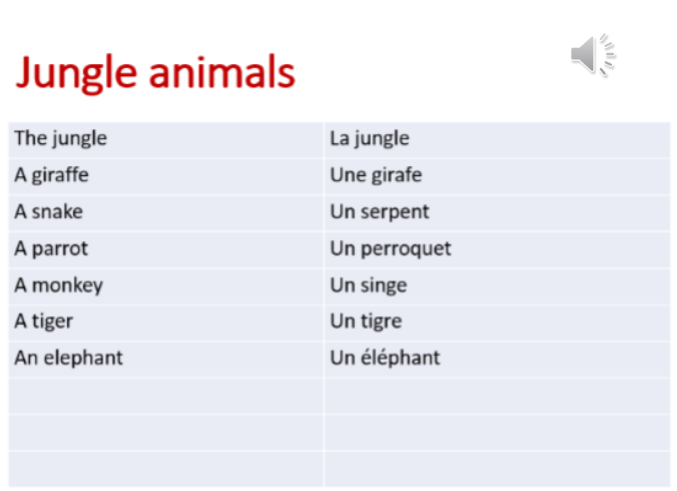 Jungle_animals_-_vocab.png